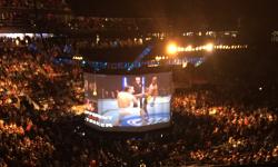 UFC_200_Tate_Nunes_Amazing_Industries_02