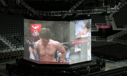 UFC_200_Tate_Nunes_Amazing_Industries_04