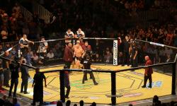 UFC_200_Tate_Nunes_Amazing_Industries_06